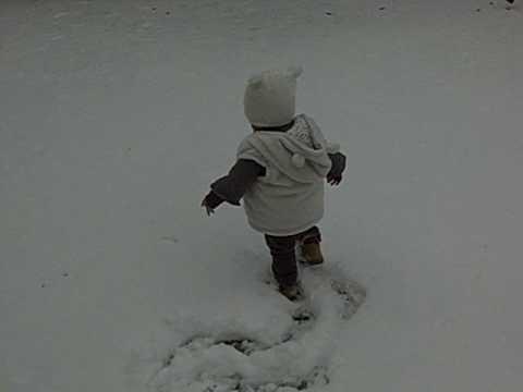 来温哥华的第一场雪