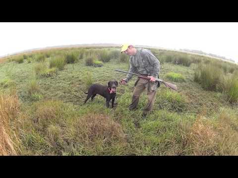 Micco Bluff Snipe Hunt