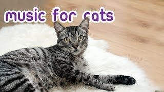Extended Cat Music - Relax Your Cat for 15 Hours!