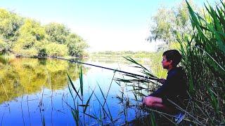 рыбалка на карася летом КАК НАЙТИ КАРАСЯ ЛЕТОМ