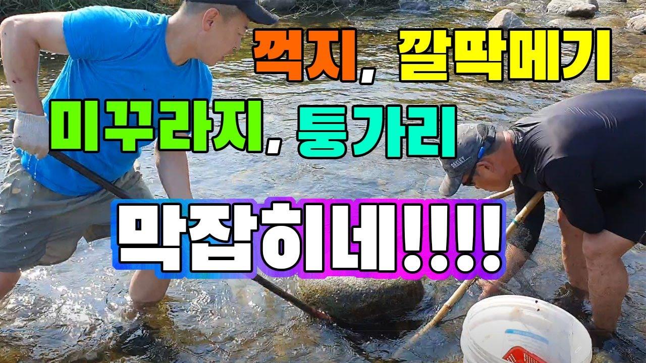 여름에 족대 하나면 굶어죽진 않습니다./ freshwater fish foot-fishing