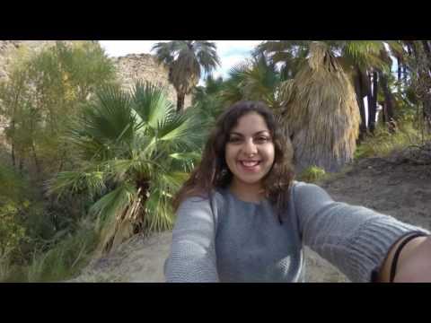 Palm Springs Part 2