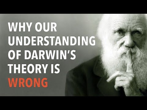 Why Our Understanding Of Darwin's Theory Is Wrong With Dr Dacher Kelner