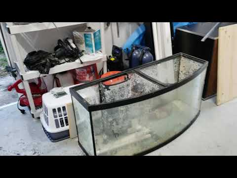 72 Gallon Bowfront Stand Build(Part 1)