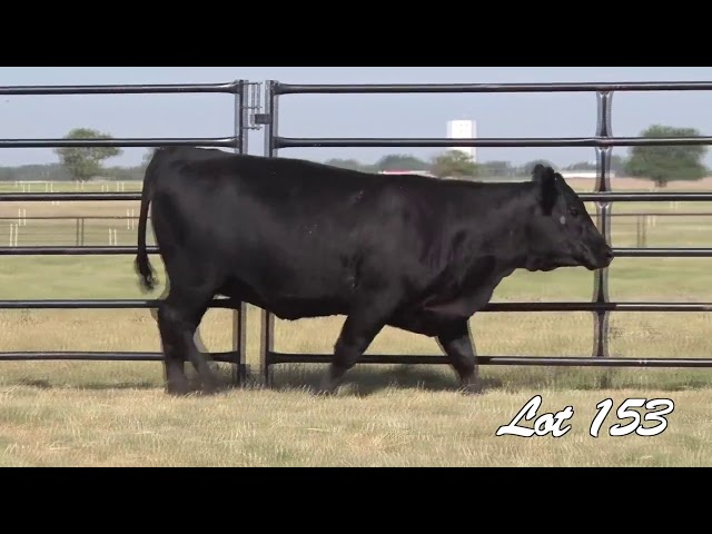 Pollard Farms Lot 153