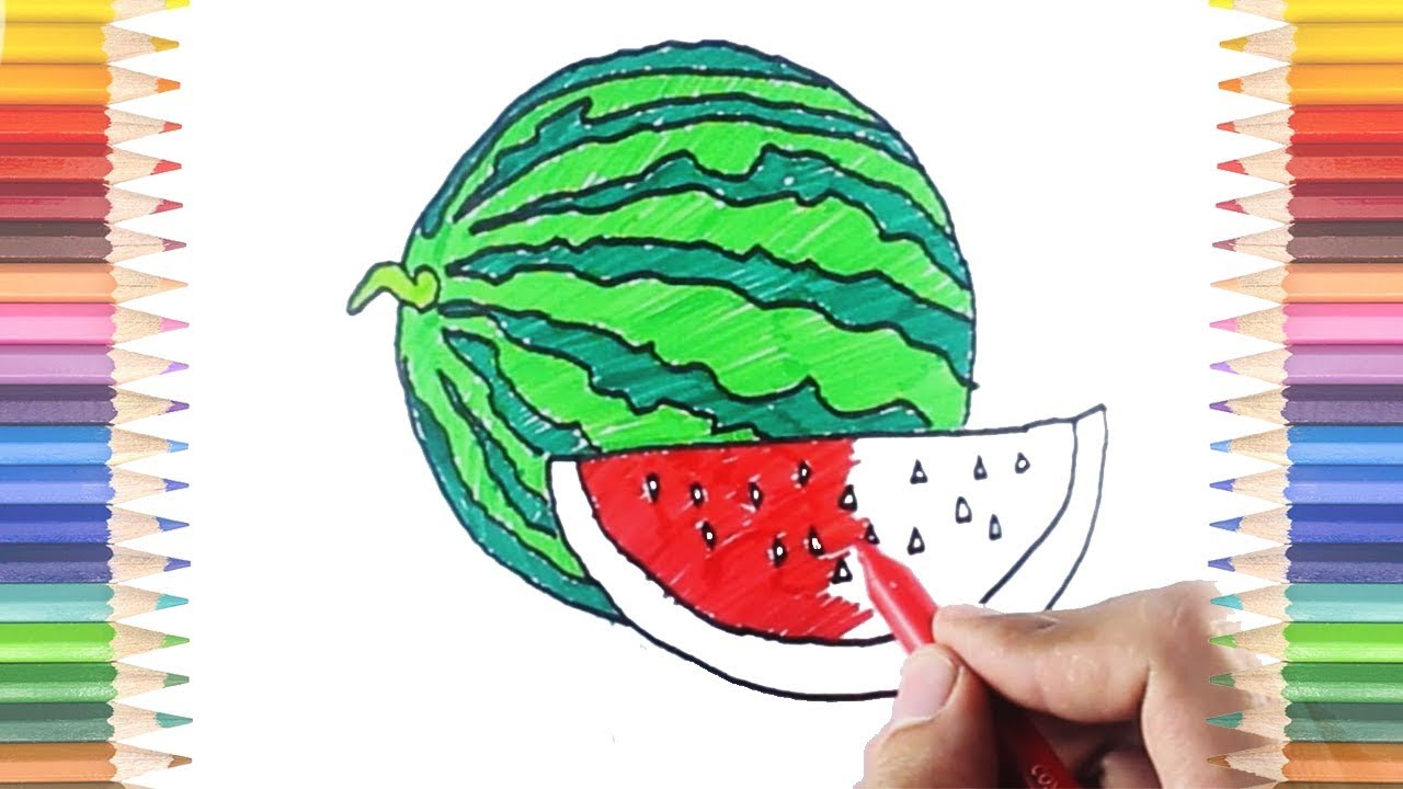 How to Draw and Color Watermelon Coloring Pages Preschool Education ...