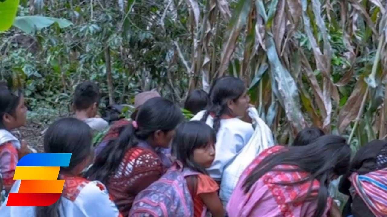 Condena Canadá ataque a brigada que llevaba ayuda en Chiapas