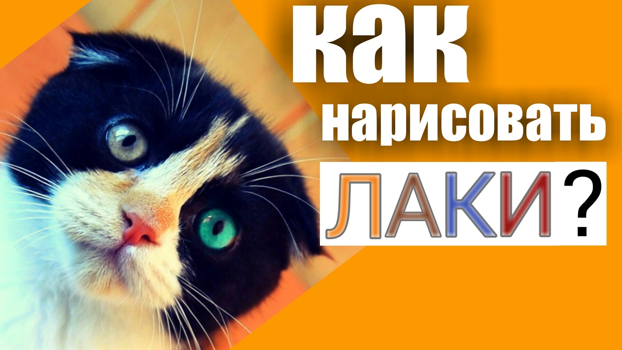 Лаки кот китай бугага