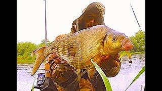 Рыбалка на Спиннинг.Огромный Лещ.Abramis brama.Джиг-Приманки.Открытие сезона 2017