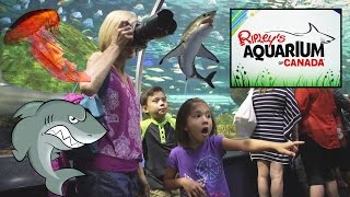 Ripley's AQUARIUM of CANADA - Waters of the World Undersea Adventure thumbnail