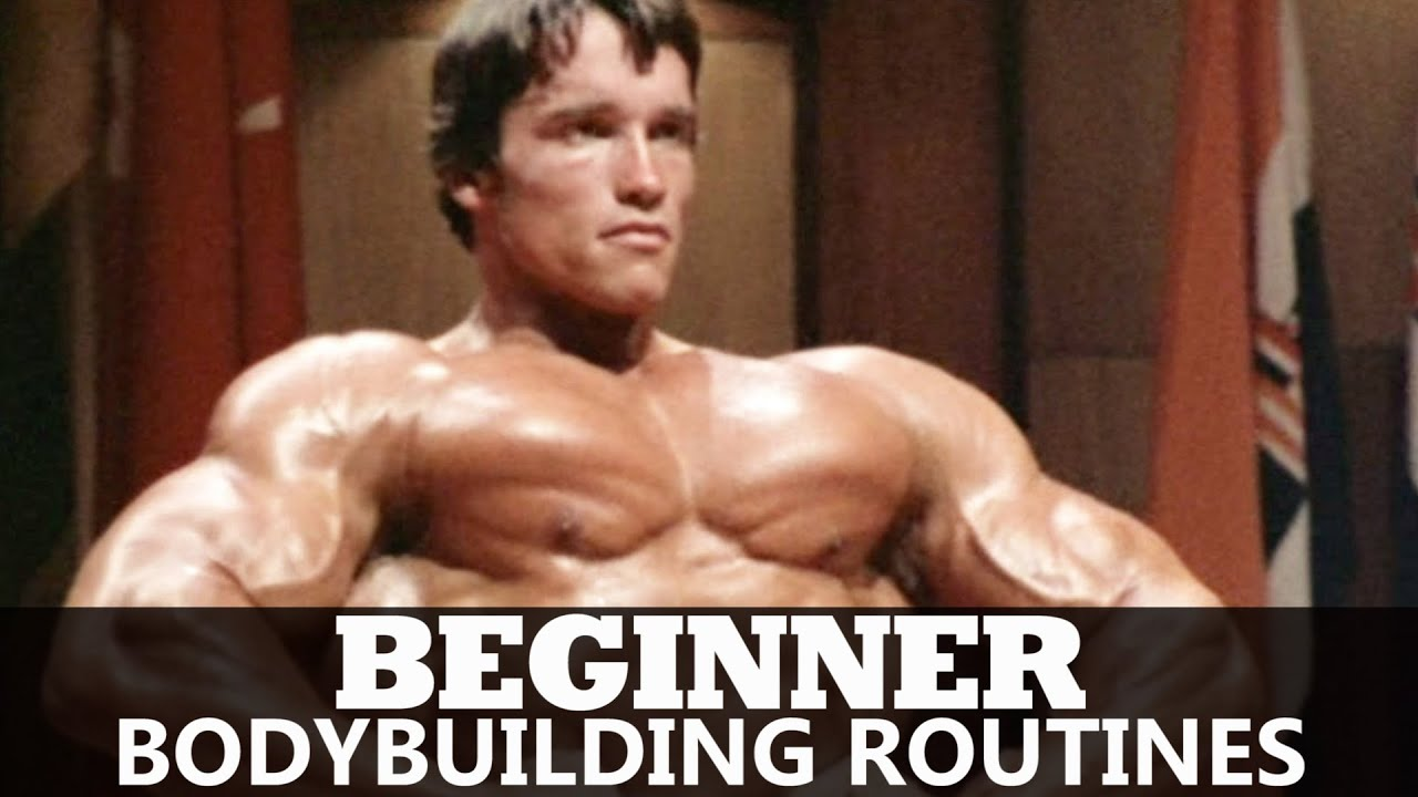 「bodybuilding newbie」的圖片搜尋結果