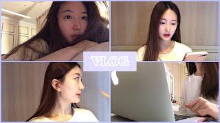 영국 유학생 vlog | 화상 영어과외 하는 방법, …