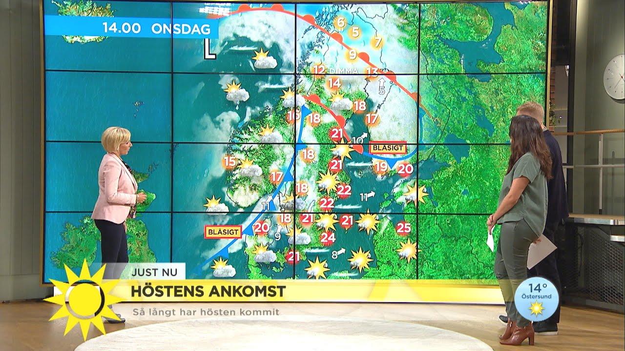 """Så här långt har hösten kommit: """"Vi har dramatik på ingång"""" - Nyhetsmorgon (TV4)"""