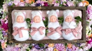 Rare Identical Quadruplets Adorably Sleep Through Newborn Photo Shoot