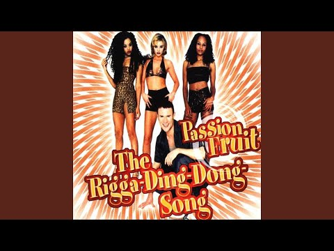 The Rigga Ding Dong Song (Plastic Bouble Mix)