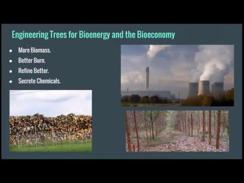 GE Trees in 2016 Webinar Video