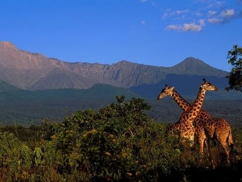 Arusha National Park - video by Tanzania National Park