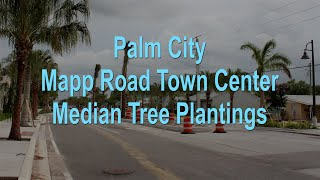 Palm City Mapp Road Town Center Median Tree Plantings