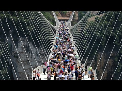 10 Interesting Facts About The Zhangjiajie Grand Canyon Glass Bridge || Pastimers