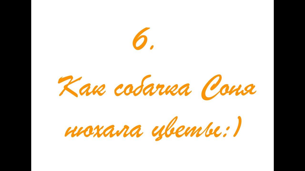 "Андрей Усачёв ""Умная собачка Соня"" 6. Как Собачка Соня ..."