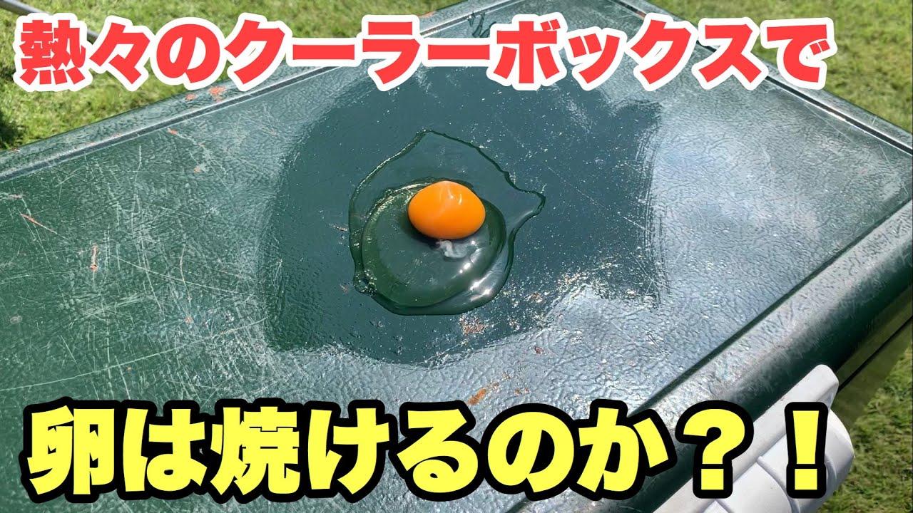 【実験】炎天下のスチールベルトで目玉焼きは焼けるのか⁈驚愕の結果が!