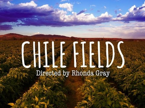 Chile FIelds