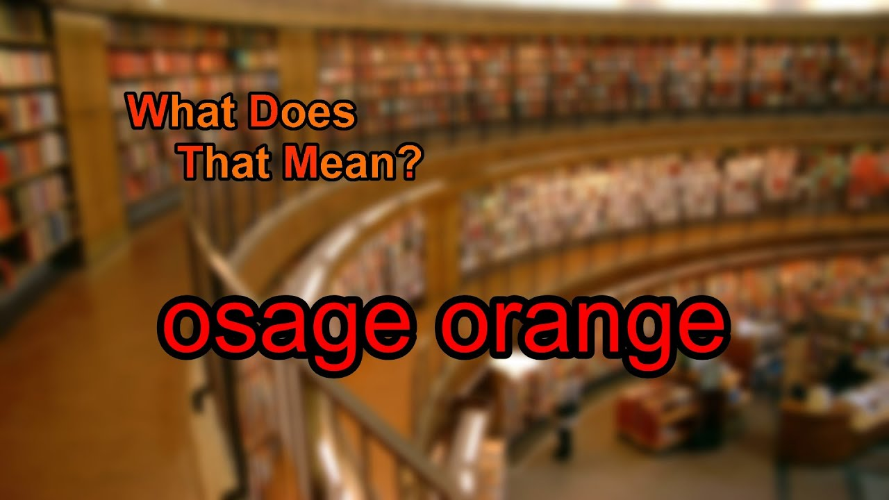 What Does Osage Orange Mean Youtube