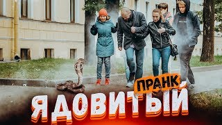 ЗМЕЯ НАПАЛА НА ПРОХОЖИХ ПРАНК Подстава от Вджобывай snake prank in Russia