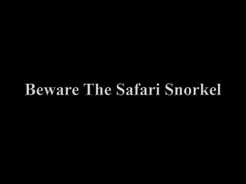 Beware The Safari Snorkel