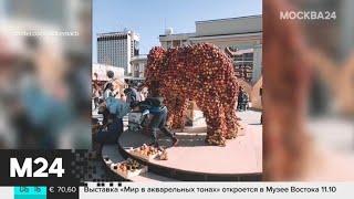 Смотреть видео Актуальные новости России за 23 сентября - Москва 24 онлайн