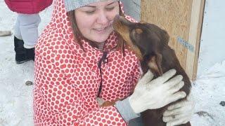 """Влог: ПРИЮТ ДЛЯ ЖИВОТНЫХ """"ХОЧУ ДОМОЙ"""" ♥ a shelter for homeless animals"""
