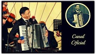 Ionel Tudorache - La Chilia-n port (Festivalul Ion Albesteanu 2014)