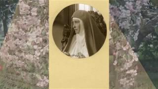 Елизавета (клип на песню)