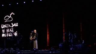 The Smashing Pumpkins - Thirty-Three Live at Wells Fargo Center 4K