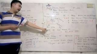 What is Takayasu's Arteritis? (Blood Vessel Inflammation).