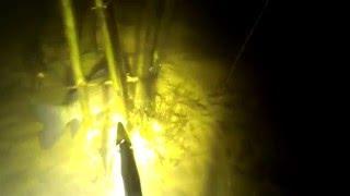 подводная охота на карася видео KG Club