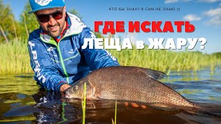 Где искать ЛЕЩА в жару Рыбалка на фидер в английском стиле