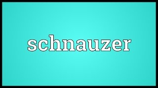 Schnauzer Meaning