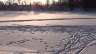 Зима в Зеленограде /часть 1/ - ДЕКАБРЬ