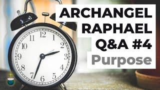 Animal abuse, suffering, reincarnation, spiritual mission, speaking out