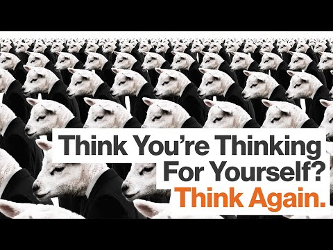 Your Brain's Wetware Formulates Opinions Without Asking