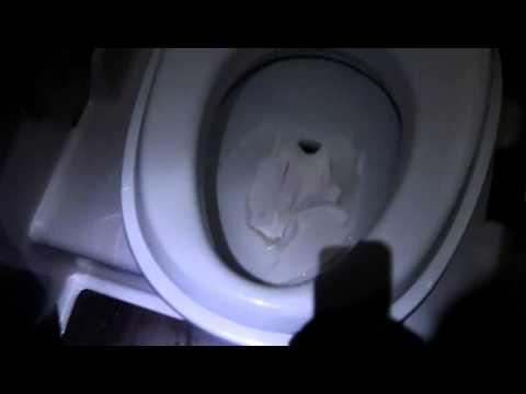 TEDFORD Toilet