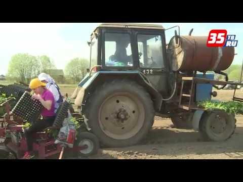 530 миллионов рублей выделили сельхозпредприятиям на посевную кампанию
