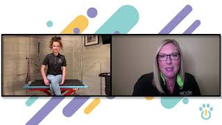 Grooming Foundations | Grooming with Gwendolyn ft Tammy Siert Ep. 1