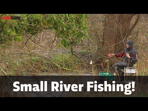 Small River Fishing - Dace, chub and roach!