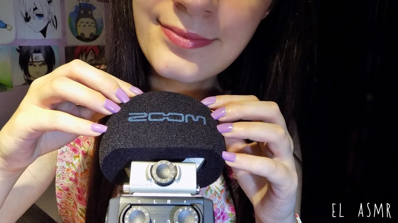 how to use zoom h6