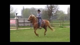 Ludovic Boulant - Extreme Cowboy race