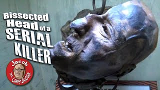 Bissected Head of a Serial Killer at Ripley's Believe it or Not WIsconsin Dells thumbnail