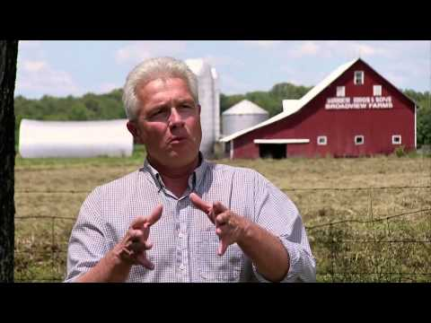Ohio Hog Farm - America's Heartland