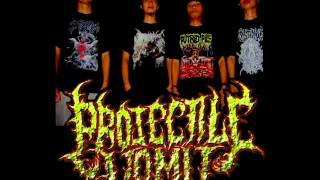 Projectile Vomit - Disgorging At The Pillar (Promo)